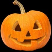 Halloween Pumpkin Workshop (For Kids 6+)